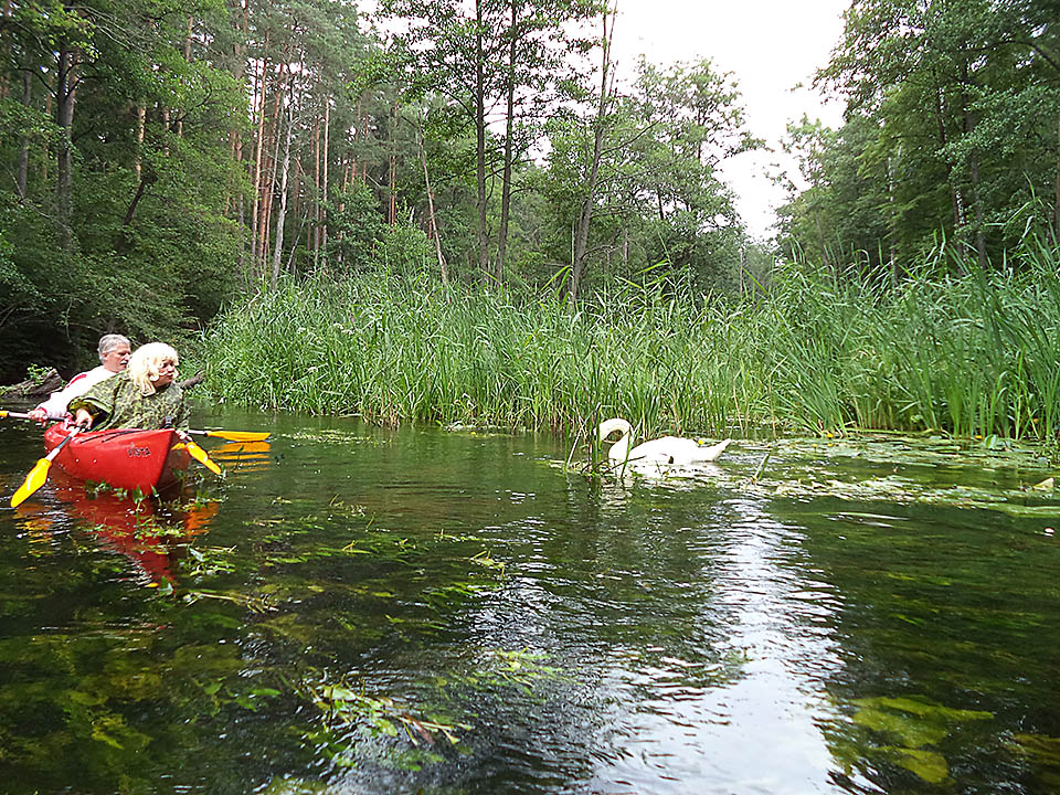 Kayaking on rivers and lakes 03